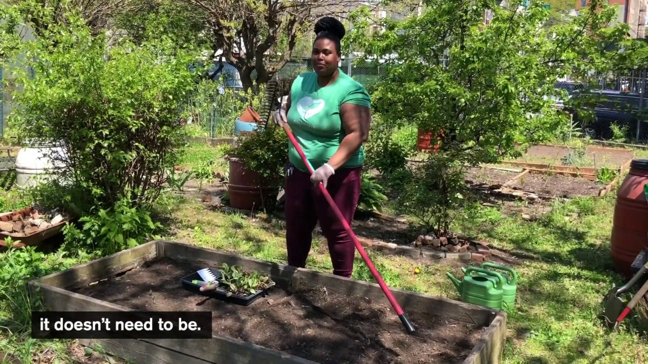 Transplanting and Direct Sowing Seeds