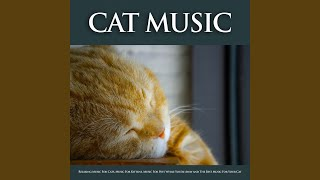Sleeping Music For Pets and Animals