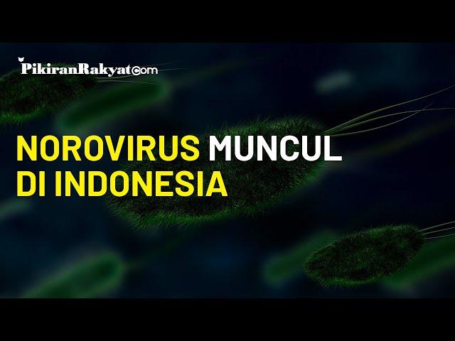 Waspada, Norovirus Muncul di Indonesia yang Bisa Menular Melalui Makanan