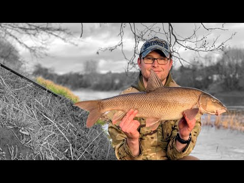 Feeder Fishing On The River Ribble