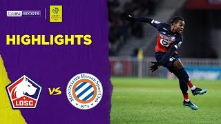 Lille 2-1 Montpellier | Ligue 1 19/20 Match Highlights