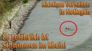 Köln: Badeunfälle im Rhein - Wasserschutzpolizei warnt vor Schwimmen im Fluss
