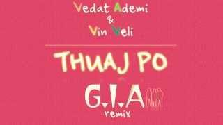 Vedat Ademi & Vin Veli - THUAJ PO (G.I.A Remix)