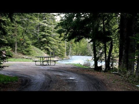 Warm Creek Picnic Area in Yellowstone National Park