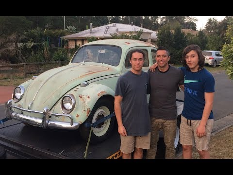 Beetle Brothers Restoration: Introduction