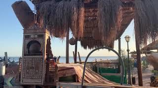 Кафе Фарша Египет Шарм эль Шейх 1 02 2021