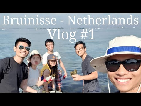 Vlog #1: Bruinisse - Netherlands, A Weekend Trip.