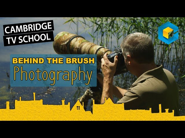 Behind the Brush - Photography