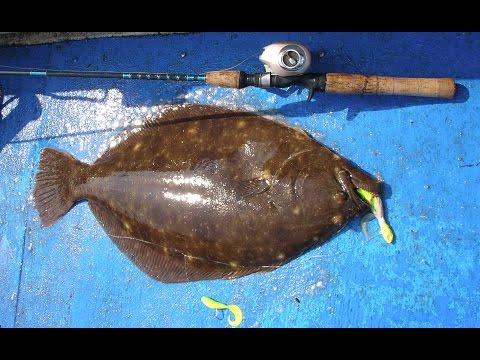 Flounder (Fluke)  Fishing - Jigging Tackle And Technique