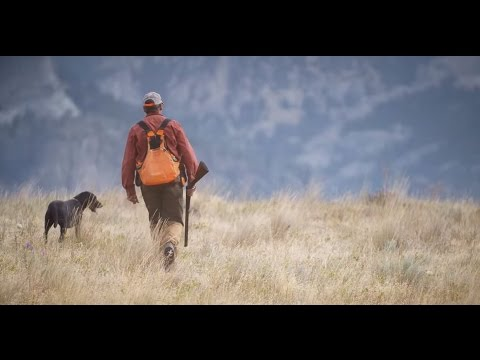ORVIS Presents: UPLANDER - An Upland Hunting Love Story.