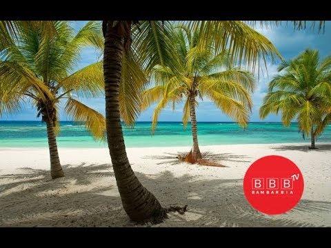 Тур до Домінікани та гарні новини! | Цены на туры в Доминикану