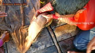 Wow! Amazing Big Fishing ! Fisherman VS. River Monsters