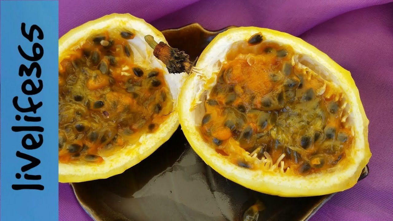how to make pisco passion fruit