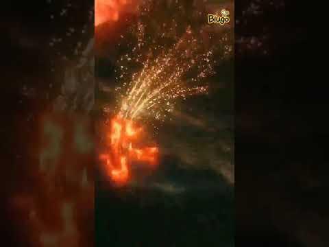 Burung Garuda Api Di Bioga Youtube