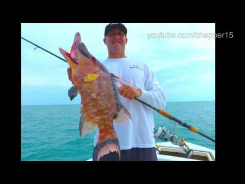 How to catch Gulf of Mexico mangrove snapper