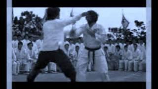 Marcus Miller-Bruce Lee