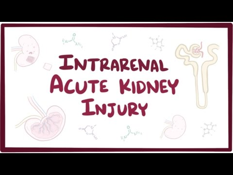 Intrarenal acute kidney injury (acute renal failure) - causes, symptoms & pathology