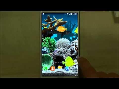 Marine Aquarium - Настоящий аквариум для Android