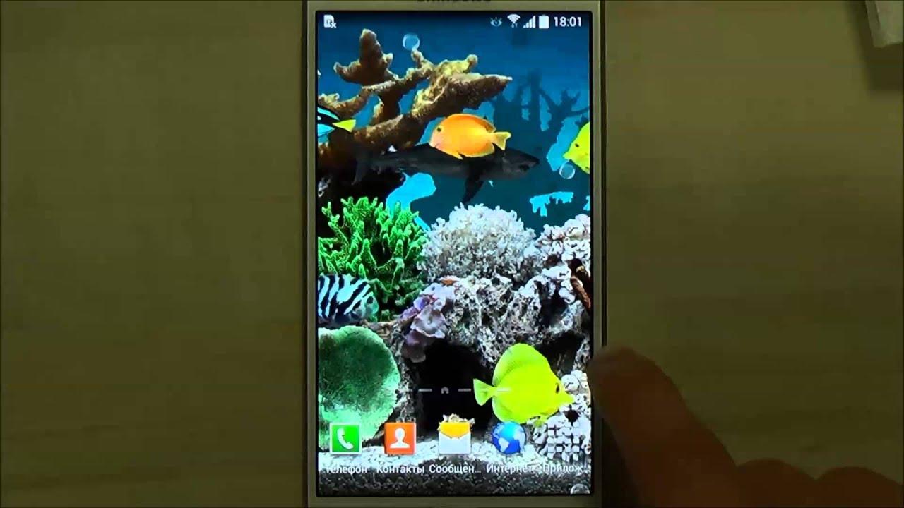 Живые обои рыбки для телефона дроид