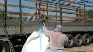 Вывоз и утилизация пестицидов (SI Group Consort)