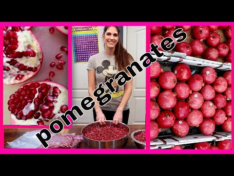 We open 75 pomegranates to freeze and store for the year