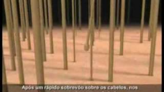 Kerium Antiqueda Thumbnail