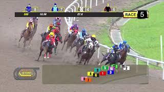 Vidéo de la course PMU PRIX COURSE 05
