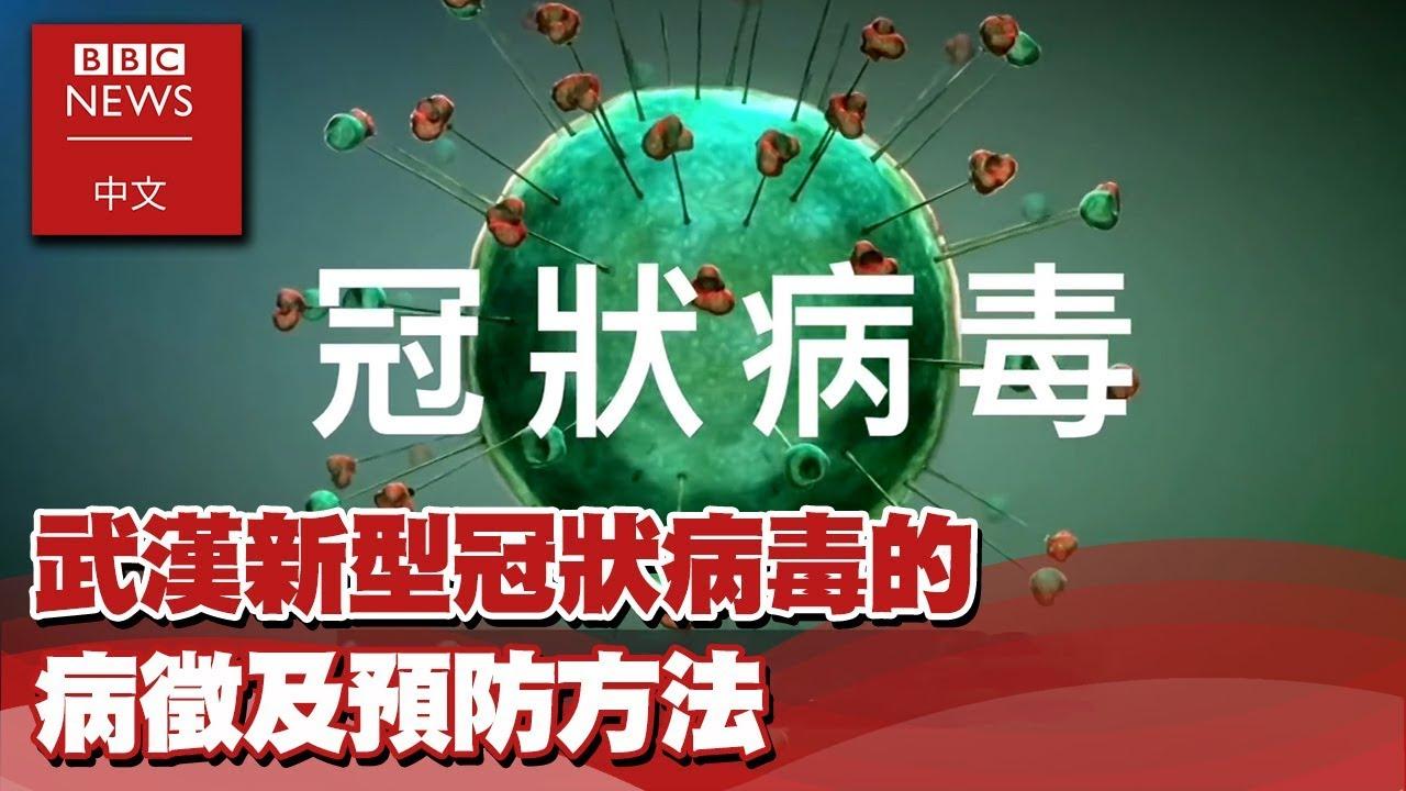 武漢肺炎:武漢新型冠狀病毒的病徵及預防方法- BBC News 中文 X EBC東森新聞 - YouTube