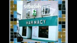 Sebadoh - I Smell a Rat