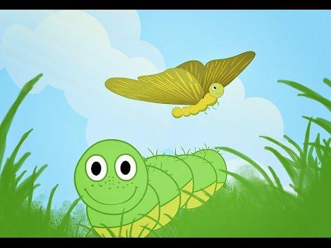 Мультик про гусеницу и бабочку для малышей