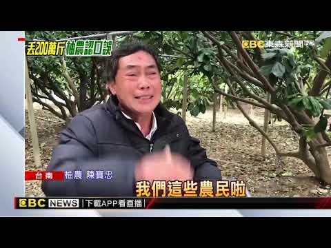口誤「200萬斤丟曾文溪」 陳姓柚農現身道歉