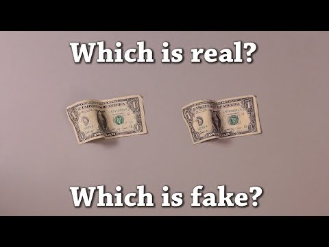 Fun Test: Which is Real? Vol 8