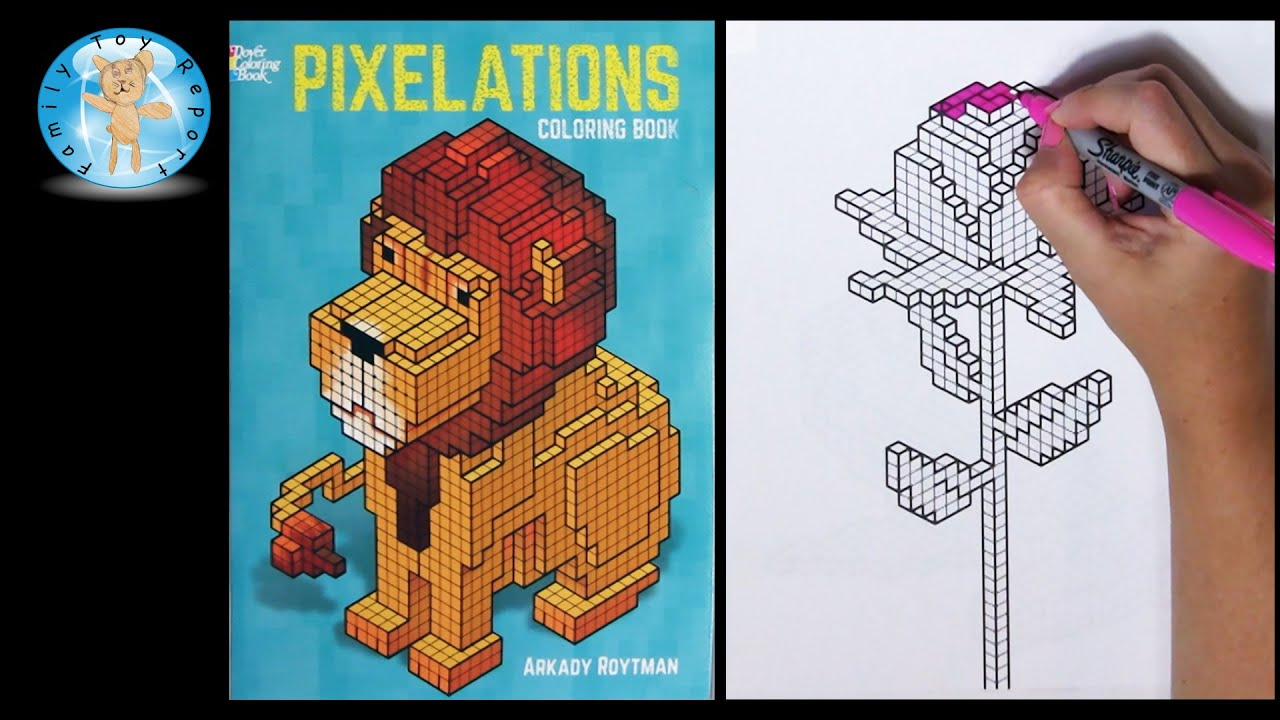Pixelations By Arkady Roytman Pixels Coloring Book Rose Family Toy