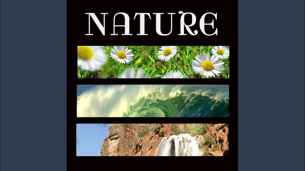 Soundscape Nature Music   A Secret Garden   Relaxing Rainforest Stream For  Tai Chi And Reiki.