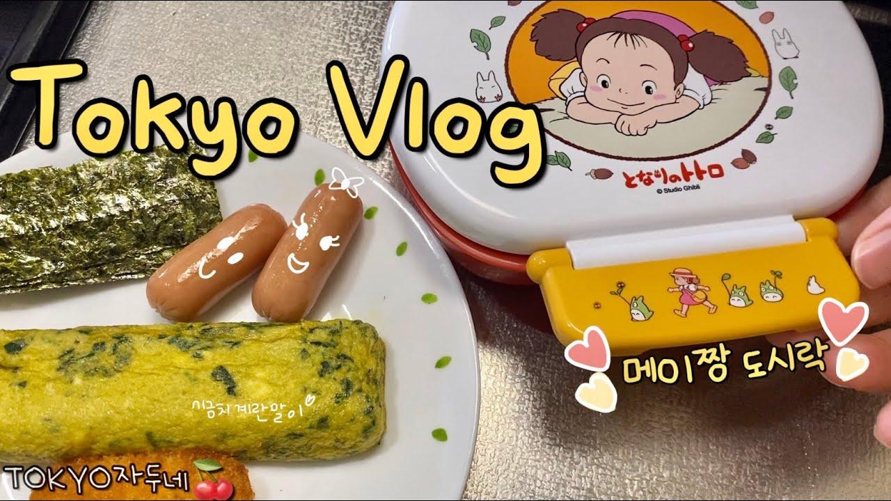 🍒 도쿄 브이로그 • 토토로 메이짱 도시락⭐️ 대만요리 먹고 장보기야키니쿠, 삼겹살 먹방🥓 반복되는 일본일상🍙