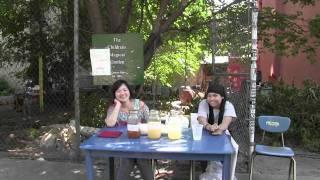 Children's Magical Garden Lemonade Limeade Peach Ice Tea Sale