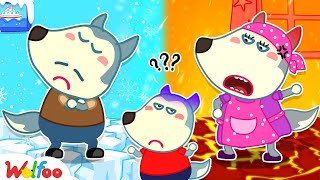 Wolfoo and Hot vs Cold Challenge With Mommy and Daddy - Wolfoo Kids Stories | Wolfoo Family