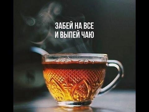 Симулятор Чаепития Скачать Торрент - фото 11