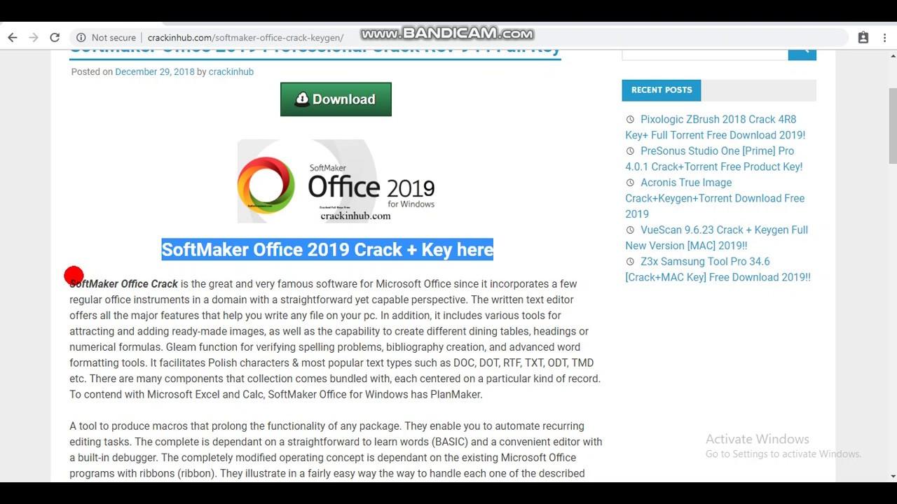 torrent windows office 2019
