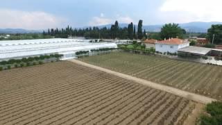 Tarım Tanııtım Videosu Tohumculuk