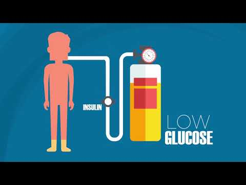 The Role of Food and Health: Blood Sugar