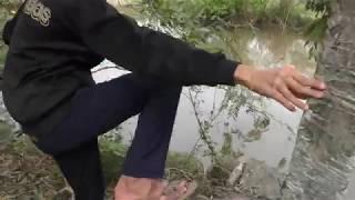 Câu cá giải trí gần chổ nuôi vịt