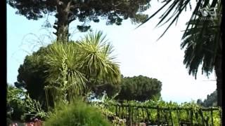 видео Искья, Италия - обзор достопримечательностей от CruClub