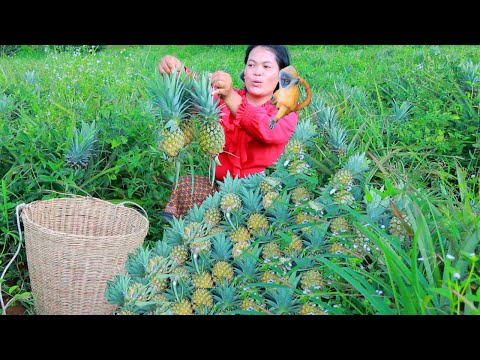 women found pineapple