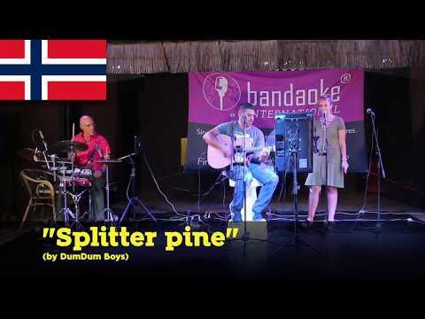 Norwegian Song