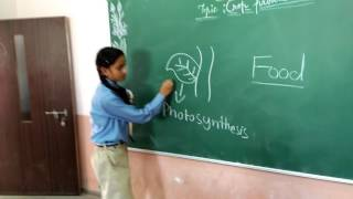 suv international school class video std viii science crop and agriculture