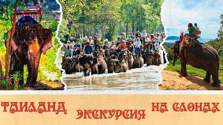 Таиланд экскурсия на слонах Thailand elephant trekking tour