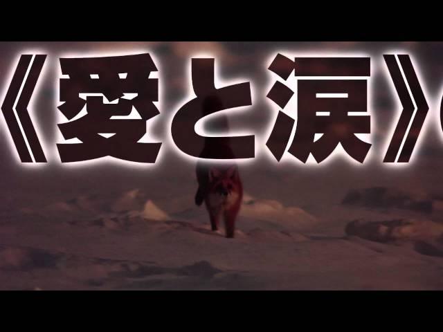 映画『キタキツネ物語 -35周年リニューアル版-』山崎まさよし特別映像