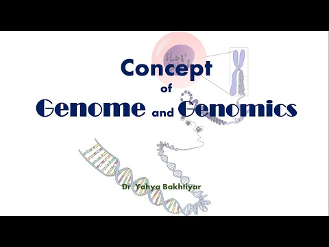 Concept Of Genome And Genomics