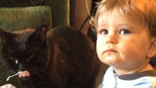 Grossest Cat & Baby Video Ever!!!!